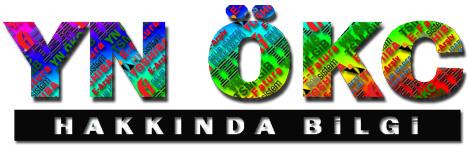 Toshiba Yeni Nesil ÖKC (YN OKC)